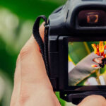 How to start your career in Nature Photography?