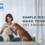 Simple Ways To Make Your Apartment Pet Friendly