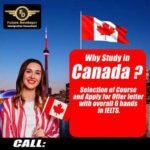 Immigration Consultants For Canada | Best Immigration Consultant in Chandigarh